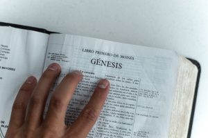 How to Read Different Parts of the Bible